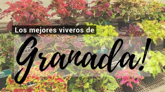 Listado de los Mejores Viveros de la Provincia de Granada, España, donde puedes comprar plantas para tus proyectos