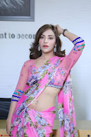 Angela Krislinzki Rogue Movie Fame Telugu Actress in Saree Backless Choli 068.JPG