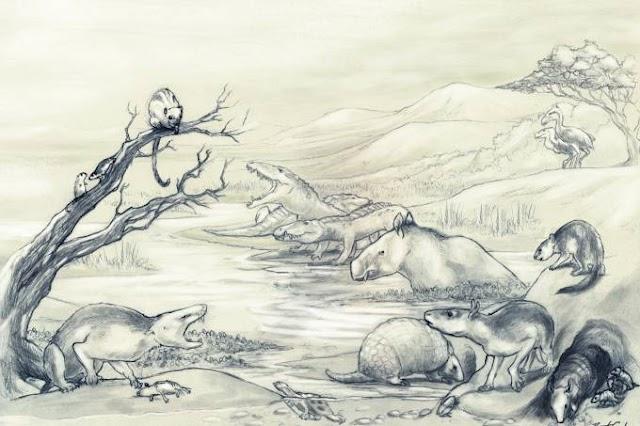 Curitiba terá parque para o estudo de fósseis