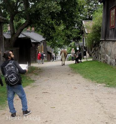 Kullannuppu, suomenehvonen, Luostarinmäki