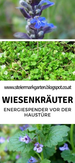 Wiesenkräuter-Pin-Steiermarkgarten