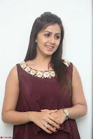 Nikki Galrani in a Brown Shining Sleeveless Gown at Nakshatram music launch ~  Exclusive 023.JPG
