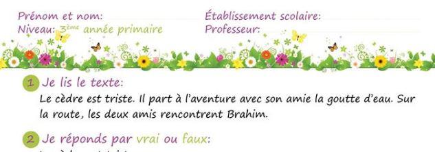 Devoir de la 3ème période pour la 3ème année primaire Français.