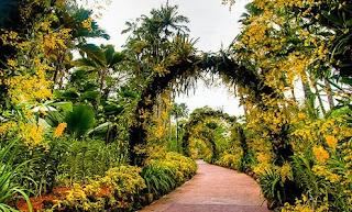 Kebun Raya Singapura