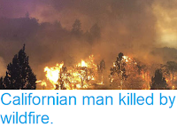 https://sciencythoughts.blogspot.com/2018/07/californian-man-killed-by-wildfire.html