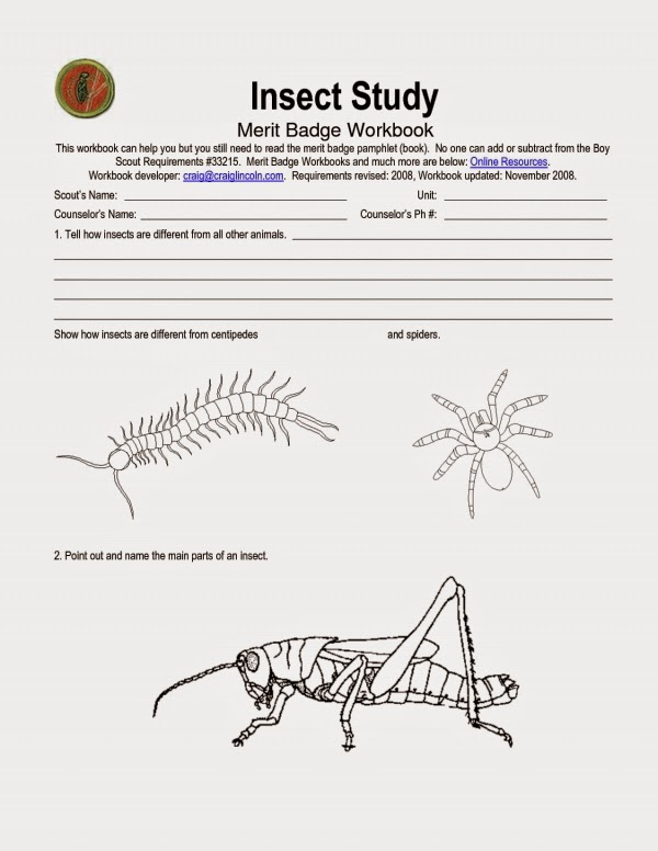 Insect Worksheets For Preschool Kootation Com