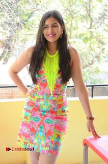 Telugu Actress Prasanna Stills in Short Dress at Inkenti Nuvve Cheppu Press Meet Stills  0024.JPG