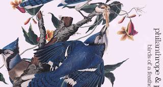 Birds of a Feather von Philanthrope und Psalm Trees   Chillige HipHop Beats sorgen für einen entspannten Tag