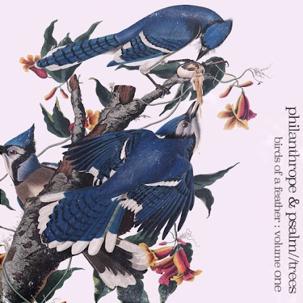 Birds of a Feather von Philanthrope und Psalm Trees | Chillige HipHop Beats sorgen für einen entspannten Tag