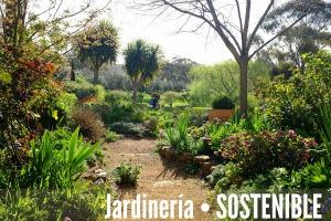 Globularia alypum para jardines de bajo mantenimiento for Jardines de bajo mantenimiento