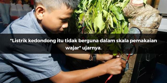 Mahasiswa Alumni UGM ini Skeptis dengan Penemuan Listrik dari Pohon Kedondong