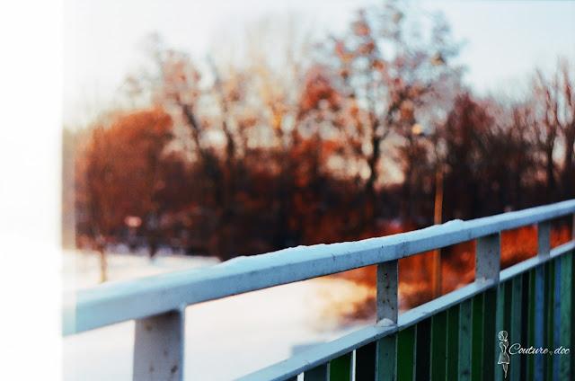 śnieg, drzewa, warszawa