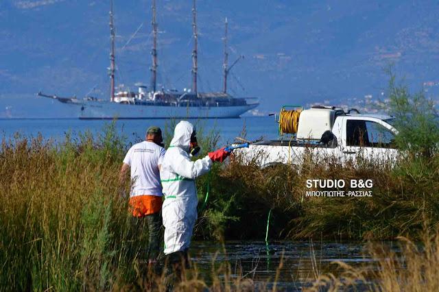Εγκύκλιος από το Τμήμα Μεταδοτικών Νοσημάτων για την καταπολέμηση των κουνουπιών