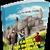 [Resenha] Livro Camila no Reino da Alvorada