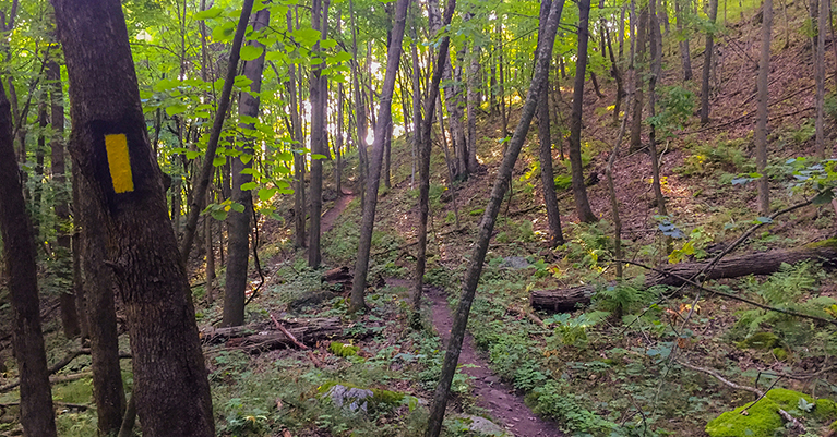 Ice Age National Trail - Holy Hill Segment