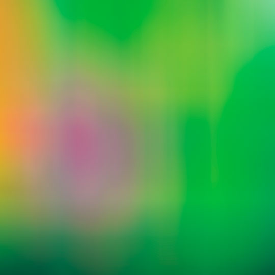 blur, photography, contemporary photography, abstract, blurred, art, contemporary art, Sam Freek,