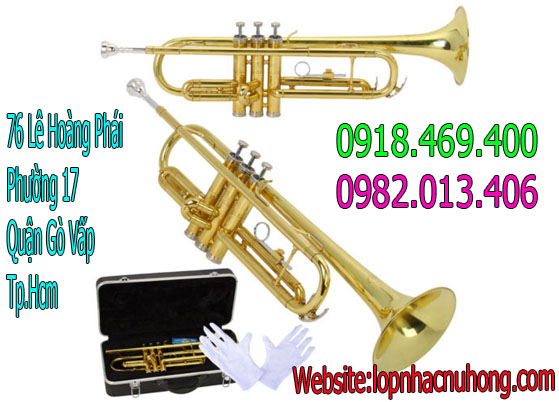 Giá kèn trumpet tại gia lai   Bán Kèn Trumpet Tại Tphcm