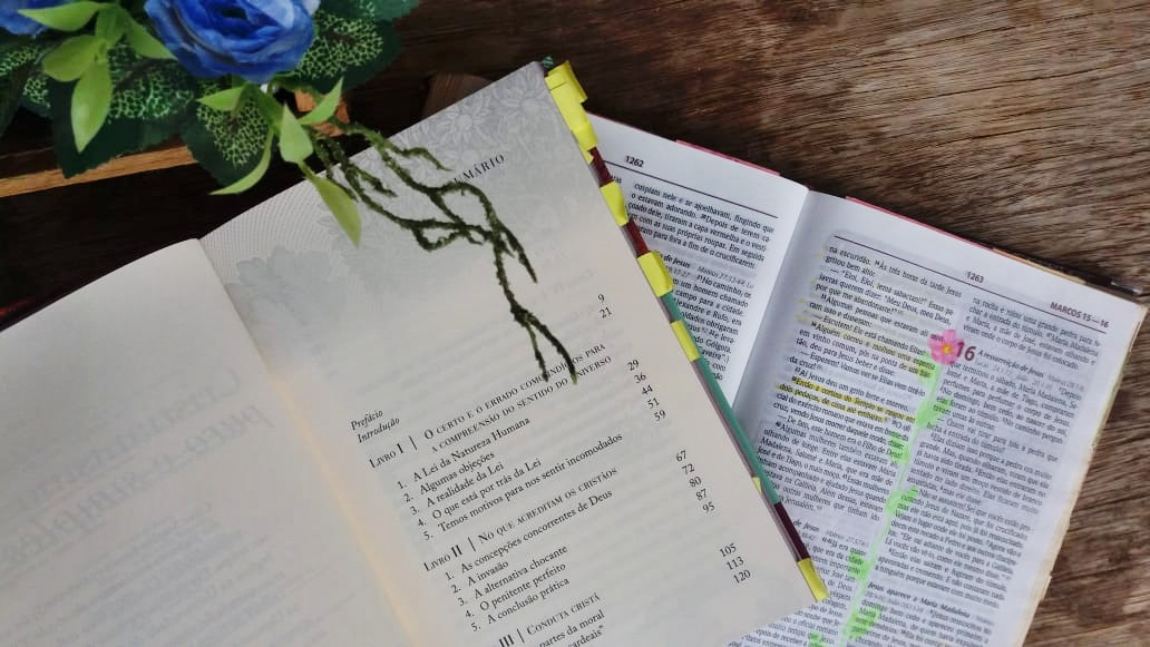 cristianismo puro e simples resenha