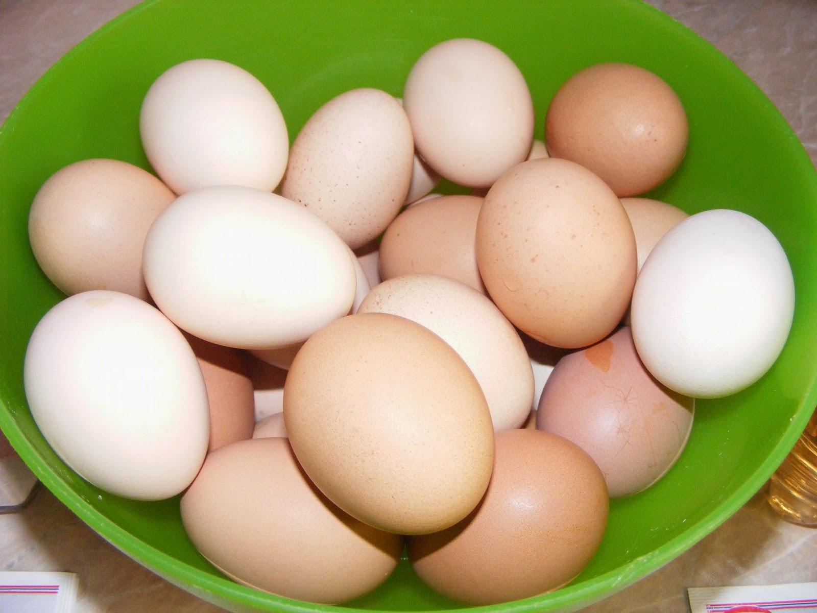 oua, oua de gaina, oua de tara, oua de casa, oua proaspete, oua pentru vopsit, retete cu oua, preparate cu oua, retete de paste, retete de pasti, cum se vopsesc ouale de paste,