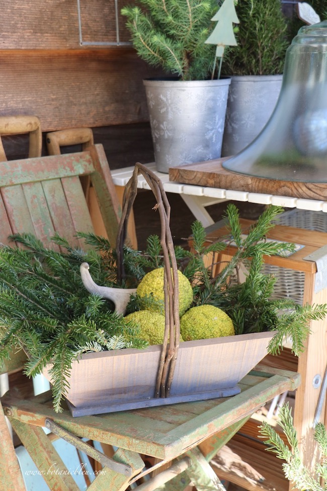 Christmas basket with horse apples, antlers and fresh greenery on a vintage wooden folding chair