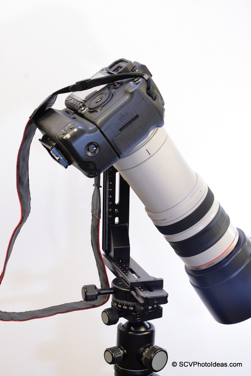 Canon EOS 50D / EF 100-400 L IS USM on Panorama Head Ver I downward