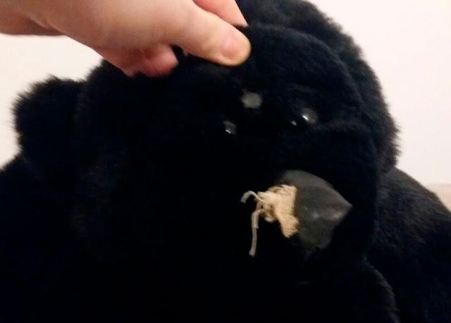 Gorila de pelúcia com nariz de couro, estragado, e buraquinho na testa