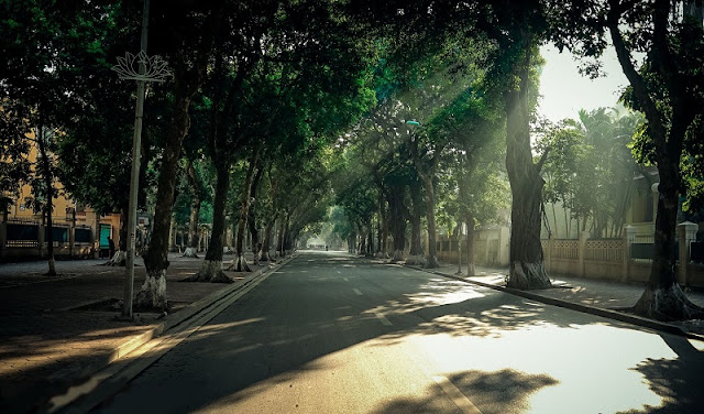 Top 6 famous streets in Hanoi that surely you have to visit