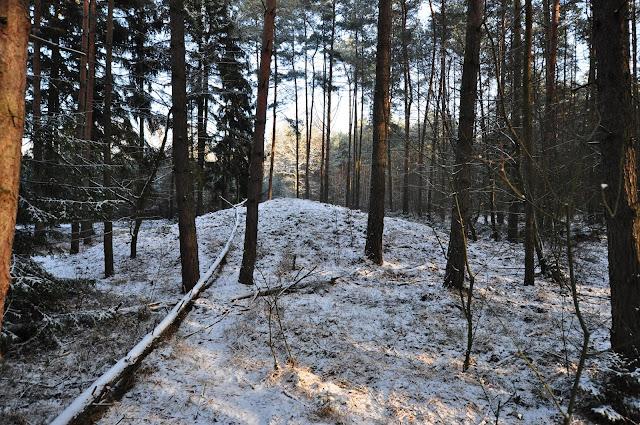 Wczesnośredniowieczne cmentarzysko kurhanowe Piaski - Rochy