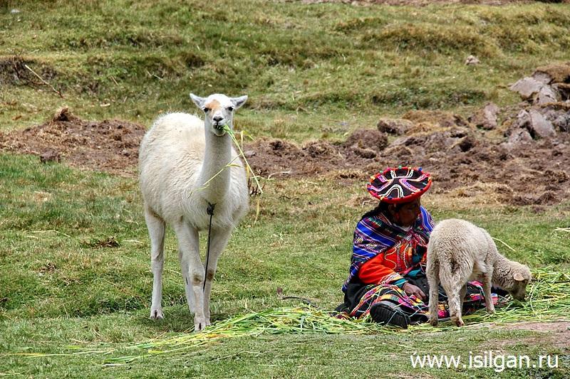 Tambomachaj-Tambomachay-Svjashhennaja-Dolina-Inkov-Peru