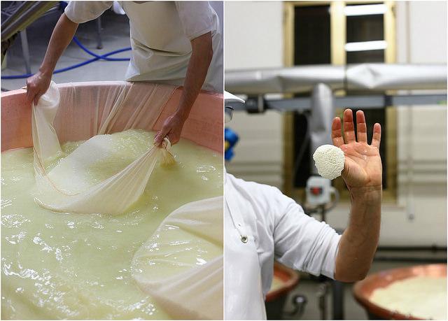 Fabrication du Parmigiano Reggiano