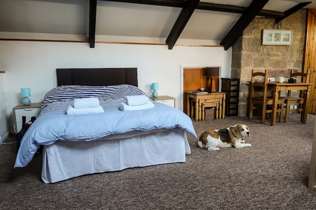 Dog friendly accommodation at The apartment, cross house cottages, Warkworth, Northumberland