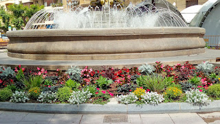 Solución Floral en La Fuente de las Musas  (Plaza de Navarra-Huesca)