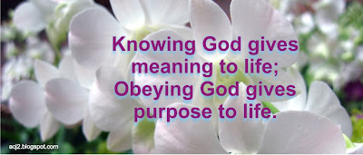 obeying God gives purpose to life