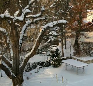 Blick in einen verschneiten Garten