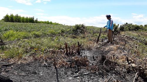 Gia Lai: Bỏ mặc cho dân chiếm đất rừng