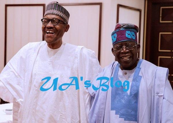 Tenure elongation: Buhari has saved APC from serious legal turmoil, says Tinubu