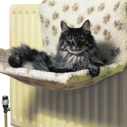 Cat radiator bed