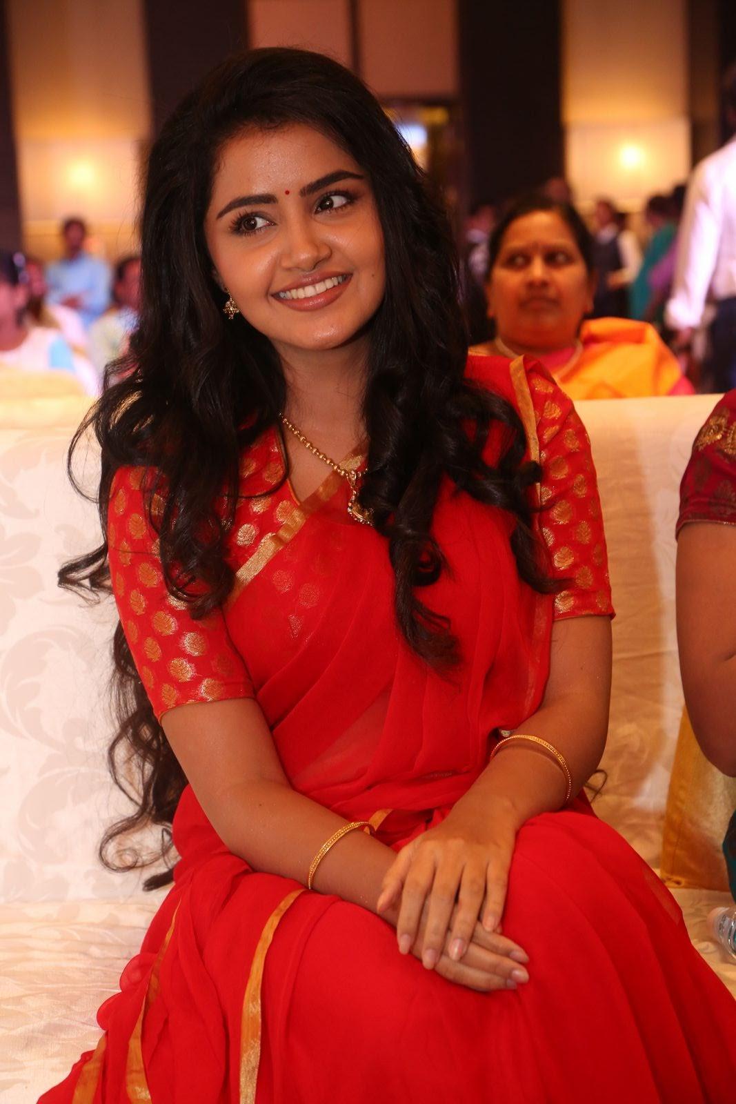 Anupama Parameswaran new cute photos-HQ-Photo-8