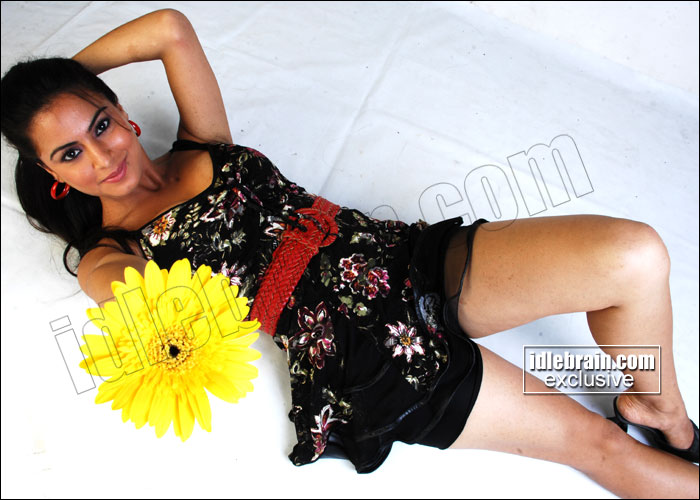 INDIAN SEXY ACTRESS IMAGES: Shradha Arya Hot Pics