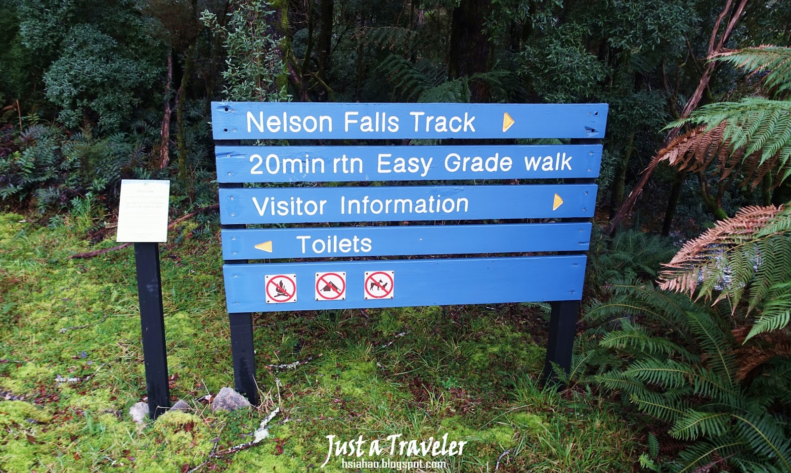 塔斯馬尼亞-西部-景點-推薦-Nelson-Falls-旅遊-自由行-澳洲-Tasmania-West-Tourist-Attraction-Travel-Australia