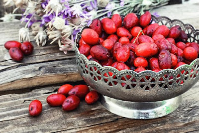 http://beszamel.se.pl/owoce/deren-jadalny-kiedy-zrywac-co-mozna-z-niego-zrobic,2155/ - Autor Zdjęcia: thinkstockphotos.com