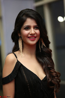 Kashish Vohra at Rogue Movie Audio Launch ~  (41).JPG