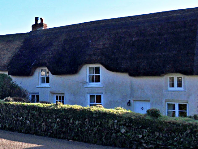 Terraced thatched cottages at Veryan, Cornwall