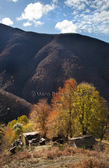 Valle Veddasca autunnale