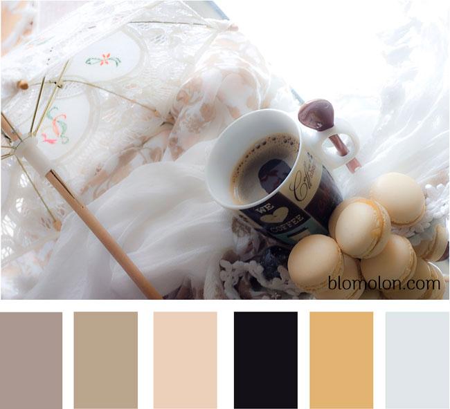 paleta-de-colores-imagen-9