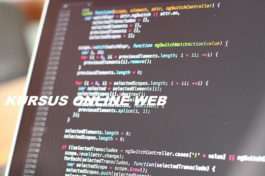 Kursus online web Program