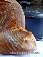 http://salzkorn.blogspot.fr/2013/11/eingetopftes-brot-testlauf-mit-einem.html