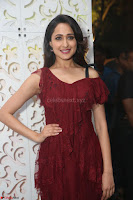 Pragya Jaiswal in Stunnign Deep neck Designer Maroon Dress at Nakshatram music launch ~ CelebesNext Celebrities Galleries 078.JPG