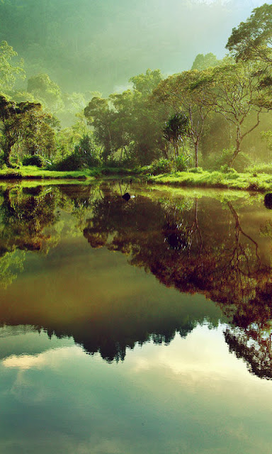 Hình nền điện thoại thiên nhiên đẹp hoang sơ và tráng lệ