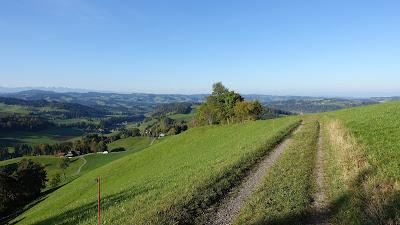 Landschaft bei Senggenberg